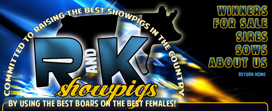 R And K Showpigs - Committed to raising the best showpigs in the country, by using the best boars on the best females!